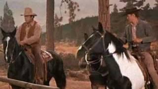 Bonanza- Konie na nieboskłonie