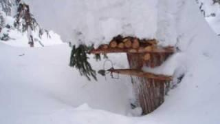Гуманный капкан на промысле соболя. Hunting in Russia