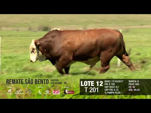 LOTE 12 T 201