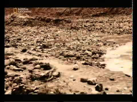 Цунами в индийском океане  Волна убившая 250 000 человек