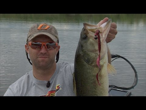 Bass Fishing City Lakes