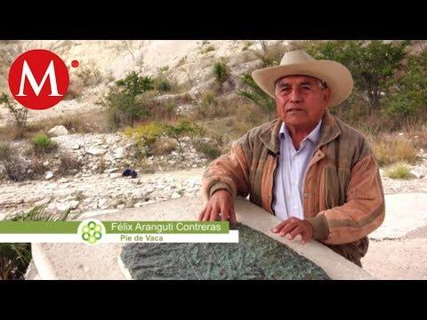 Tepexi de Rodríguez y su paleo lago   Conexión Milenio