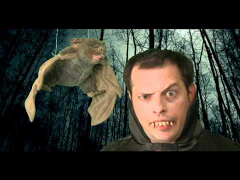 YourWildLifeStyle Tip: Energy Vampires