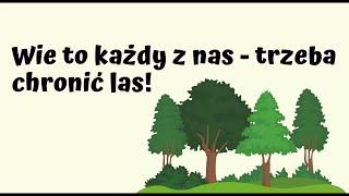 EKO Warsztaty   Wie to każdy z nas – trzeba chronić las!