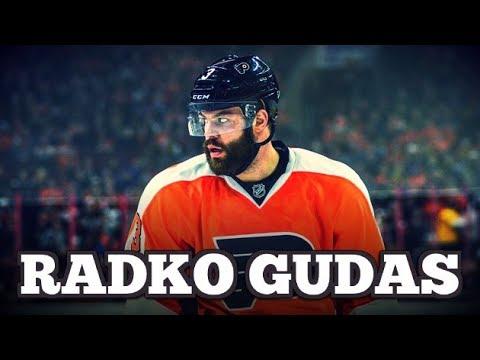 The Best of Radko Gudas || Animal
