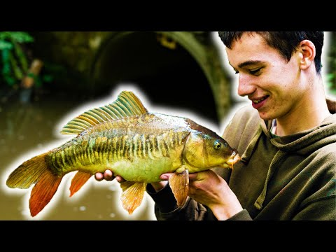 Micro Fishing - BIG SURPRISE!