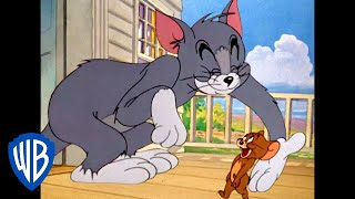 Tom y Jerry en Latino | ¡Amigos! | WB Kids