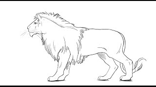 PK Draw How to draw a Lion