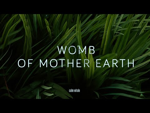 Slow Shaman Drum : ROOT Chakra : Rebirth of Mother Earth 🌳🌍 Deep Grounding Meditation