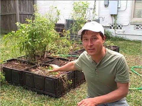 FREE Plastic Crate Raised Bed Garden Update and Irrigation Install