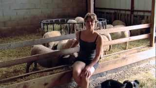 L'Agneau du Limousin, qu'y a-t-il de meilleur ?