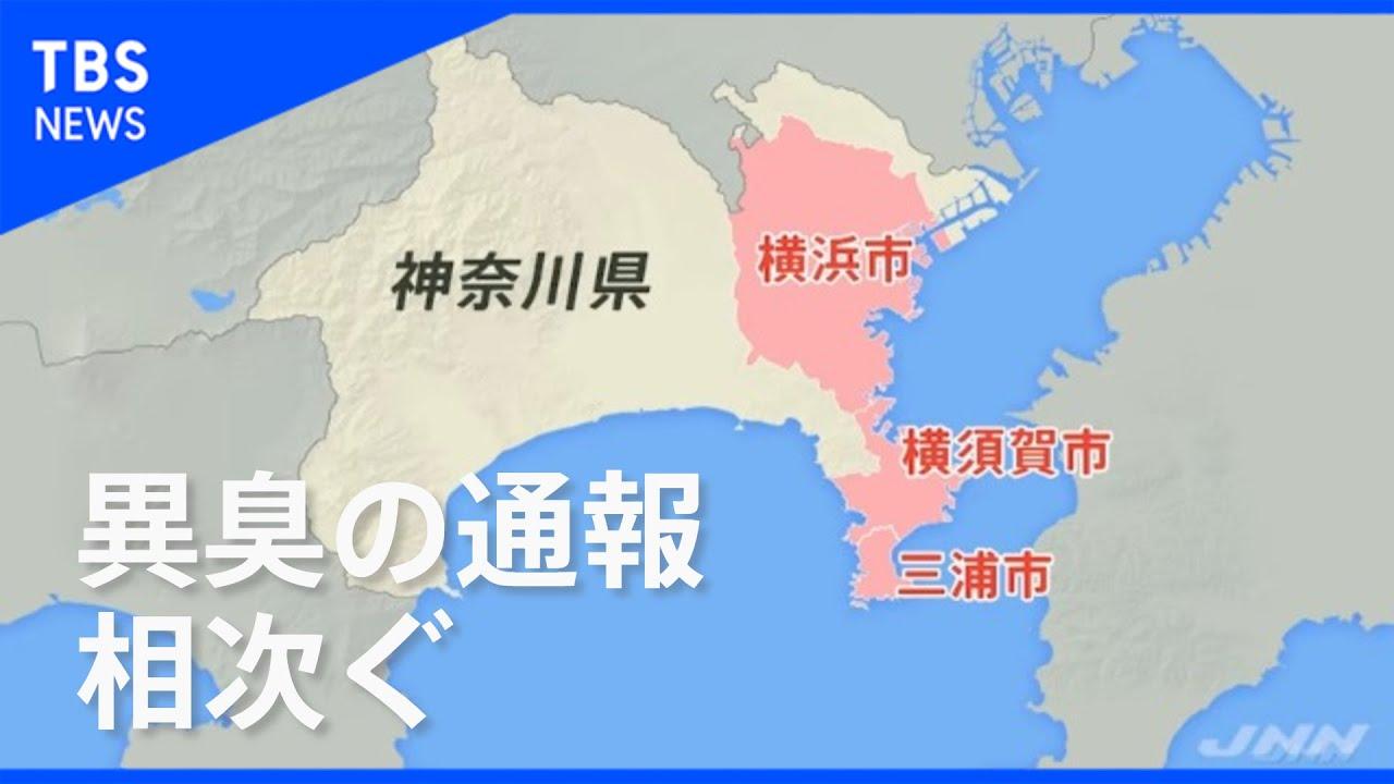 異臭 原因 横須賀 神奈川・横須賀の異臭の原因はなに?大地震の前兆か海底火山か |