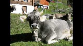 Liechtenstein Lied - für Fürst , Gott und Vaterland