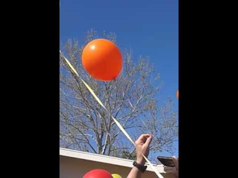 Jonathan Moore Celebration of Life  balloon release