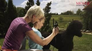 MOSER Animal машинки для стрижки животных