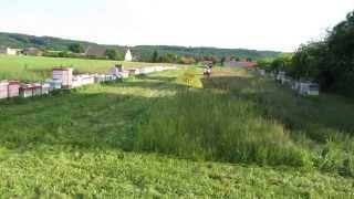 Canycom cm 141 v metrové trávě (3 feet grass)