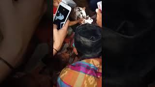 Download Video subhanallah Lagi heboh di bima sila  kec. Bolo. Terdapat kambing yg aneh N matax 1 mirip dajal. MP3 3GP MP4