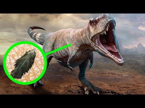 恐龍不爲人知的11個驚人真相