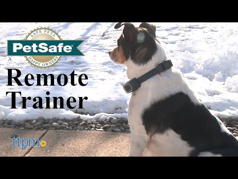 remote-trainer-from-petsafe