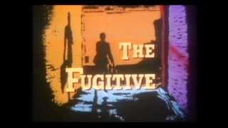 O Fugitivo (The Fugitive)