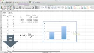 AP Biyoloji için Excel Hata Çubukları çizim