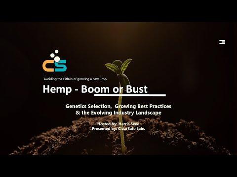 Hemp Boom or Bust: How To Get Started Growing Hemp