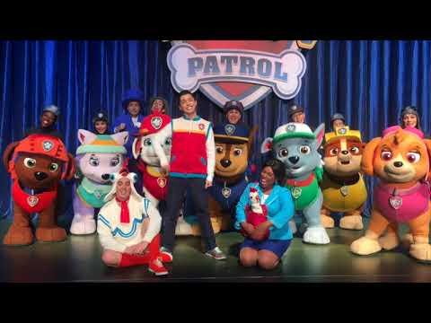 paw patrol youtube # 55