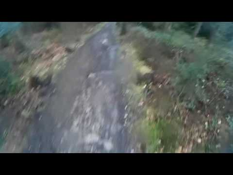 Dalby forest MTB red route 19/03/17