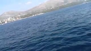 Delfino Croazia