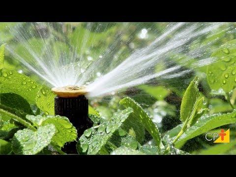 Curso a Distância Projeto de Irrigação Localizada - Componentes do Sistema