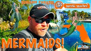 weeki-wachee-mermaids-tarpon-springs-sponges-warmest-water