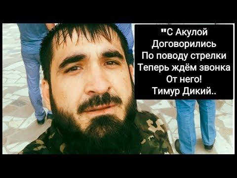 Тимур Дикий  наконец—то дождался своей встречи с Акулой Грузинским