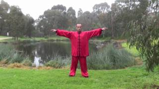 ziran qigong level 2 (Taoist Nature Qigong)