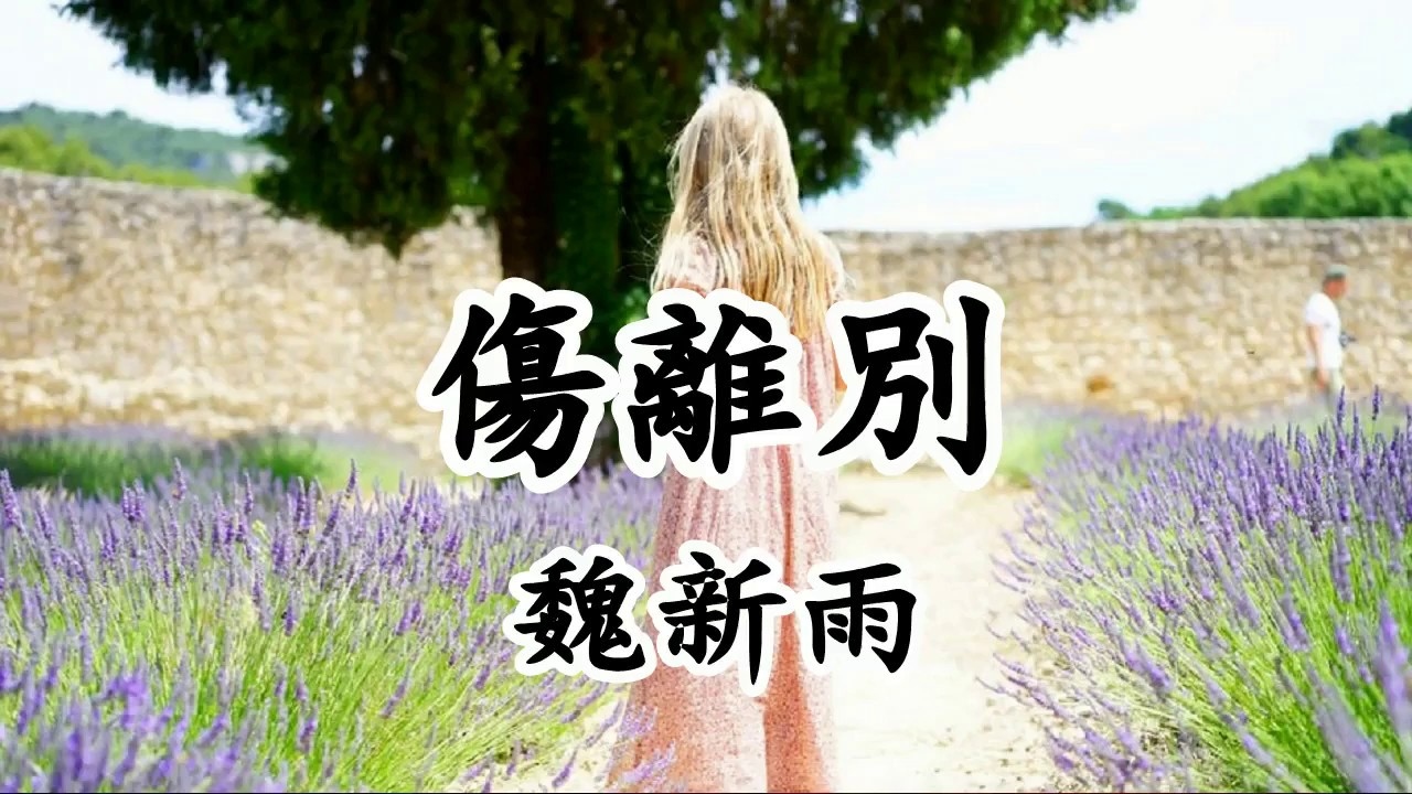 傷離別 - 魏新雨【2019新歌首發】 - YouTube