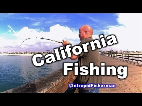 Fishing Seal Beach Pier California - Caught Some Fish Had Some Fun