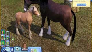 The Sims 3 Pets Gameplay Horses