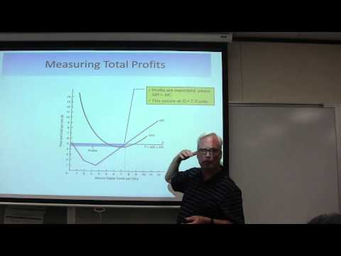Micro Economics Economic Profit & The Marginal Decision Rule