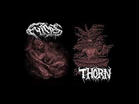 Thorn - Eclipsing A Dying Sun