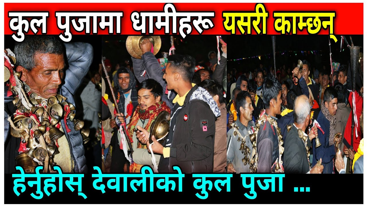 Download यसरी काँमछन् धामीहरू देवालीमा    latest Kul Puja    Dewali Puja    PGC Khabar    Dewali Puja Video