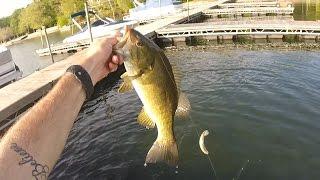 My Favorite NJ Bass Lake. Private Lake Fishing 2 Hour 12+ Pound Bag