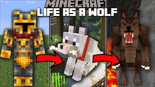 Minecraft LIFE AS A WOLF MOD / FIGHT AND PLAY WITH OTHER ANIMALS!! Minecraft