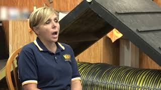 Service Dog Training For Veterans at Top Tier K9 - Vet Comp & Pen