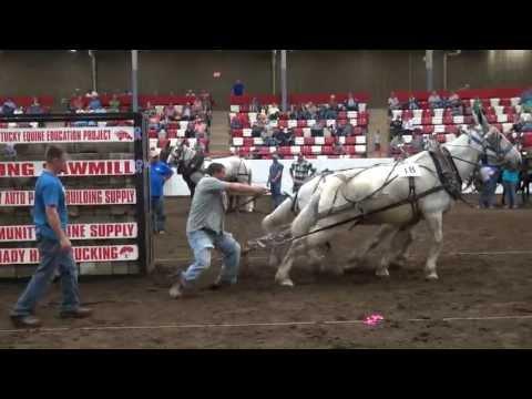 2013 BDHMC Mule Pull winning pull YT