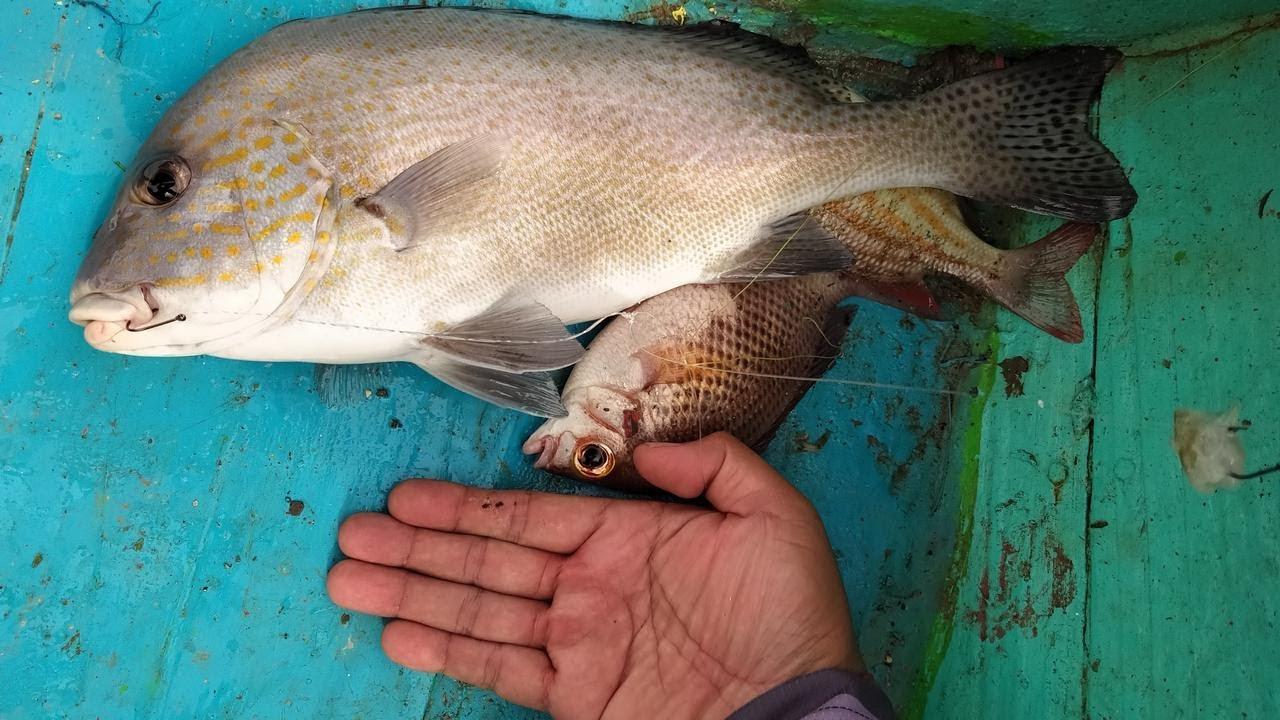 Spot Mancing Tanjung Lesung