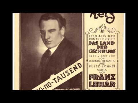 Franz Lehár - Melodie z operet - Pavla Břinková