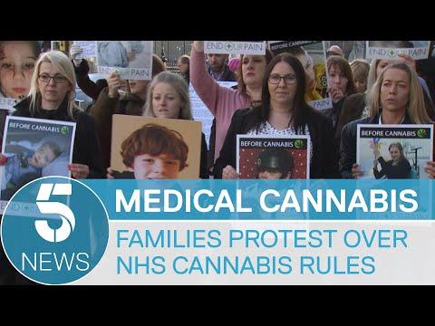 Medicinal cannabis: parents threaten legal action | 5 News