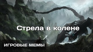Стрела в колене. Игровые мемы [4]