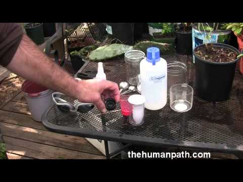 How to make and use an herbal eye wash at home & in the field
