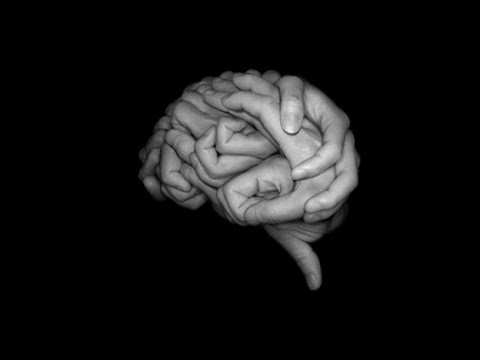 The Signing Brain: What Sign Languages Reveal about Human Language and the Brain
