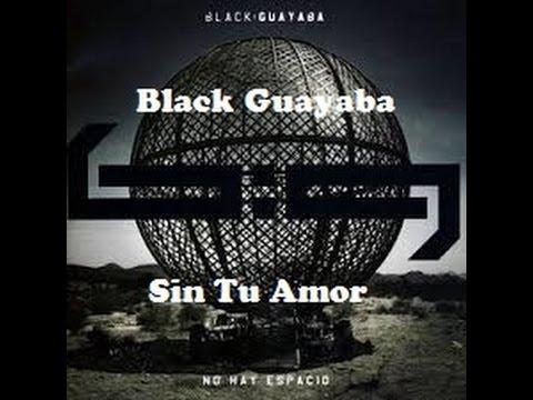 Black Guayaba- Sin Tu Amor (con letra)